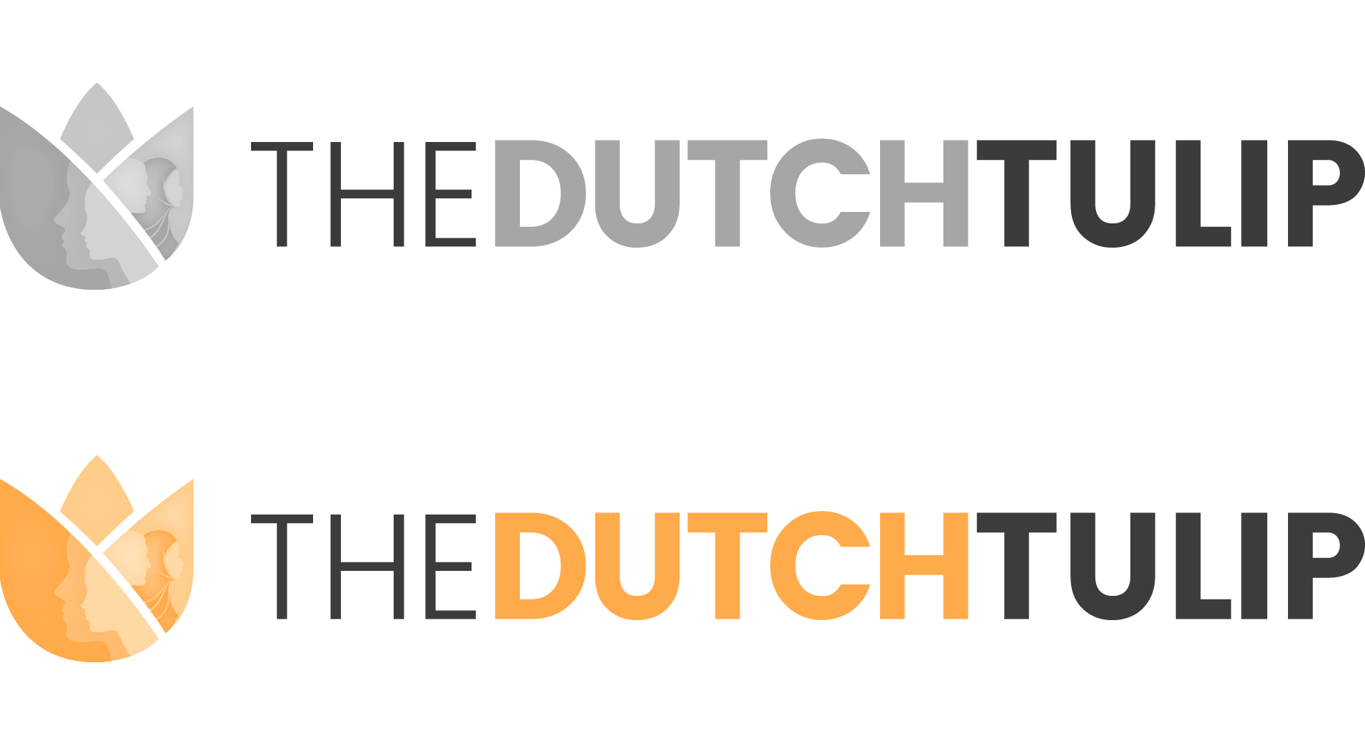 The Dutch Tulip